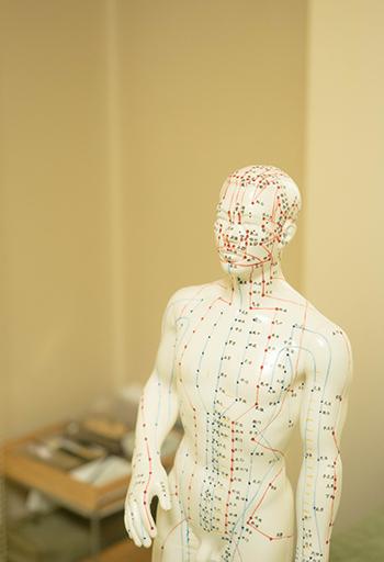 経穴人形(C)表参道・青山・原宿・渋谷エリアにある源保堂鍼灸院Tokyo Japan Acupuncture