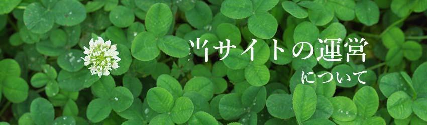 源保堂鍼灸院のサイト運営について(C)表参道・青山・原宿・渋谷エリアにある源保堂鍼灸院