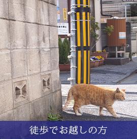 徒歩でお越しの方(C)表参道・青山・原宿・渋谷エリアにある源保堂鍼灸院 TOKYO ACUPUNCTURE CLINIC AT OMOTESANDO
