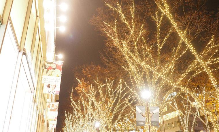 OmotesandoTokyo表参道東京 表参道・青山・原宿・渋谷エリアの源保堂鍼灸院 acupuncture clinic