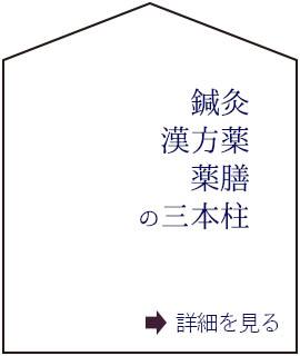 鍼灸・漢方薬・薬膳の三本柱(C)表参道・青山・原宿・渋谷エリアにある源保堂鍼灸院acupuncture clinic therapy in Tokyo