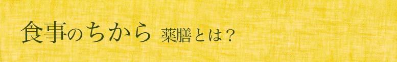 薬膳とは ごはんとからだと 薬膳相談室(C)表参道・青山・渋谷エリアの源保堂鍼灸院 Tokyo, Japan, authentic acupuncture clinic