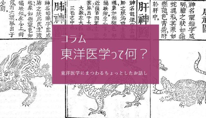コラム東洋医学ってなに?(C)肩こり・腰痛・寝違い・頭痛・生理痛など源保堂鍼灸院Tokyo Japan Acupuncture Clinic