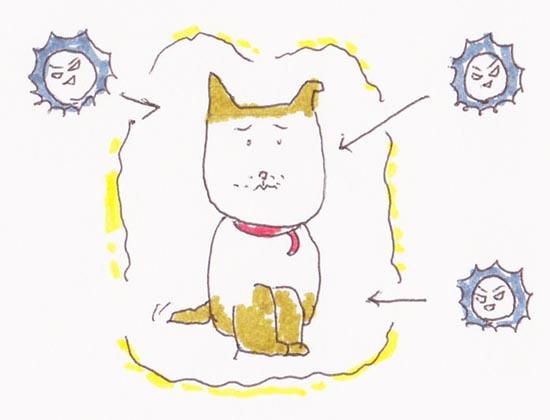 扶正袪邪 正気と邪気のせめぎ合い(C)肩こり・腰痛・寝違い・頭痛・生理痛など源保堂鍼灸院Tokyo Japan Acupuncture Clinic