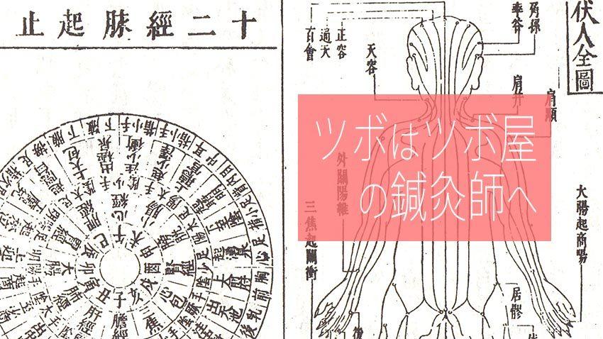 ツボのお話し 東洋医学(C)表参道・青山・原宿・渋谷エリアにある、漢方相談もできる源保堂鍼灸院 Japanese acupuncture