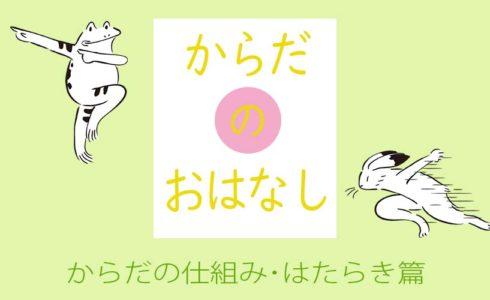 からだのはなし 仕組み・はたらき篇 (C)肩こり・腰痛・寝違い・頭痛・生理痛など源保堂鍼灸院Tokyo Japan Acupuncture Clinic